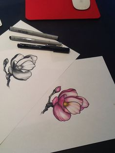 Magnolia drawing in color and black' n gray