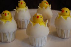 Hatched Chick Cupcakes