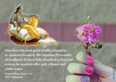 One does not need great wealth, education or opulence to satisfy the Supreme Personality of Godhead. If one is fully absorbed in love and ecstasy, he needs to offer only a flower and a little water. Krishna Mantra, Radha Krishna Love Quotes, Lord Krishna Images, Radha Radha, Hare Rama Hare Krishna, Radha Kishan, Sanskrit Symbols, Gita Quotes, Wisdom Quotes