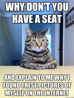 reminds me of my moms cats. Everytime we sit down at the dinner table to eat, that cats find an empty chair and sit just liek this with us lol