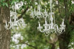 Chandeliers in the trees!