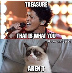 Grumpy Cat sings Treasure by Bruno Mars