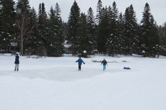 Ice Skating is an amazing way to spend a day during the winter with family and friends.  Ice Skating is also a very economical way to enjoy winter. http://www.sandlake.on.ca
