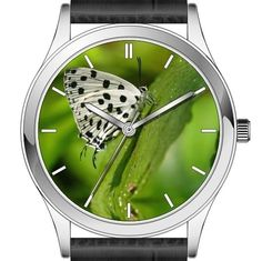 Butterfly wrist watch series - Tajuria maculata butterfly