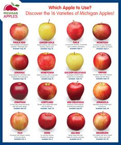 Apple to Use? Discover the 16 Varieties of Michigan Apples! Which Apple to Use? Discover the 16 Varieties of Michigan Apples! Apple to Use? Discover the 16 Varieties of Michigan Apples! Plum Apricot, Tips Fitness, Fitness Outfits, Fitness Diet, Health Fitness, Fitness Women, Fitness Planner, Body Fitness, Female Fitness