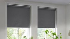 The Fyrtur smart blinds from IKEA work with its Home smart app and the TRÅDFRI gateway, plus there's support for Apple's HomeKit, Google Assistant, and Amazon Alexa.#smartblinds #smart #blinds #smarthome #smartfashion #decor #homedecor #homeornamentation #smartbedroom #curtains #curtain #curtainsdesign. Small Windows, Blinds For Windows, Window Blinds, Blinds Online, Horizontal Blinds, Single Bedroom, Master Bedroom, Blackout Blinds, Ikea Home