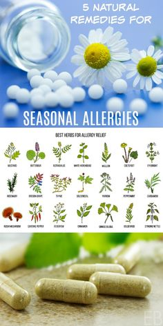 Natural Remedies to Beat Seasonal Allergies! Learn 5 natural remedies to beat seasonal allergies, from homeopathics to herbs, even diet! Home Remedies For Uti, Uti Remedies, Natural Health Remedies, Natural Cures, Natural Healing, Herbal Remedies, Natural Foods, Bloating Remedies, Natural Treatments