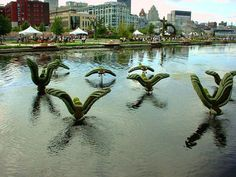 'Mallards Taking Off!' entry by Quebec, Canada in the Mosaïcultures Internationales 2000 in Montreal