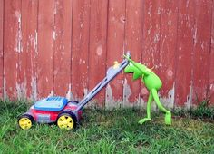 I love seeing Kermit the frog do human things. It's like if he's normal!