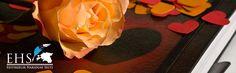"""★ Fresh Orange ★ Kirjutamisvõistlus """"Minu unistused"""" Kirjutamisvõistlus kõikidele Soomes elavatele eesti lastele! Haara pliiats, pastakas, arvuti või koguni sulg ja kirjuta meile OMA UNISTUSTEST!"""