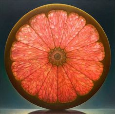 art light painting nature fruit still life oil painting realism hyperrealism citrus stained glass transparency Dennis Wojtkiewicz Dennis Wojtkiewicz, Fotografia Macro, Fruit Slice, Fruit Painting, Colossal Art, Realistic Paintings, Oil Paintings, Awesome Paintings, Flower Paintings