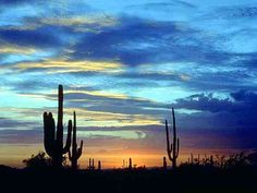 Arizona Desert Sunset | ... mountains to the west, north and east. Sunset views are unbelievable