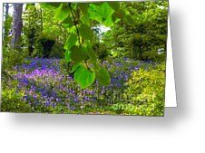 Bluebell woodland 3 Greeting Card by Joan-Violet Stretch