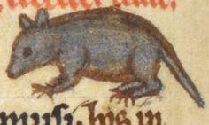 Animal detail from medieval illuminated manuscript, British Library Harley MS 3244, 1236-c 1250, f49v