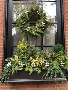 Window Boxes: Winter and Holidays ⋆ Wisteria & Rose