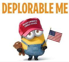 deplorable-me