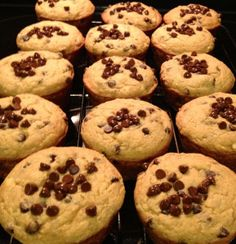 Chocolate Chip Banana Muffins (gluten/milk free) 3 WW+ points