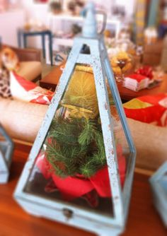 Cute for a holiday terrarium! @Somace Lifestyle