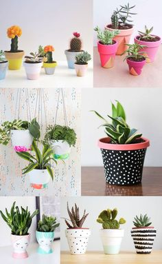 6 DIY PAINTED POT IDEAS: