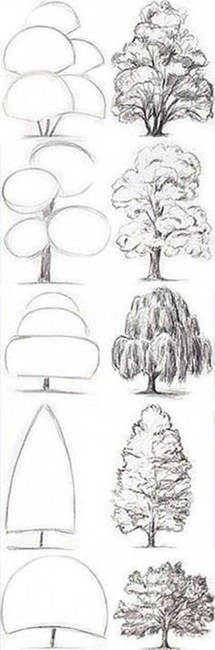 Simple Tree Drawing Sketches Illustrations 33 Ideas For 2019 Drawing Sketches, Pencil Drawings, Art Drawings, Drawing Ideas, Drawing Art, Pencil Art, Inspiration Drawing, Illustration Inspiration, Music Drawings