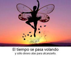 El tiempo se pasa volando y sólo deseo alas para alcanzarlo