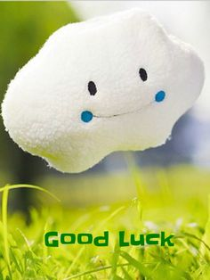 Good Luck Good Luck, Wish, Snoopy, Fictional Characters, Best Of Luck