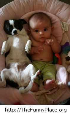 Cute baby with little dog