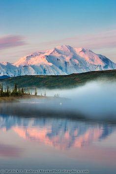 Mt. Denali at Dawn: Trumpeter swans swim amidst the morning fog over the calm waters of Wonder Lake - Denali National Park & Preserve, Alaska. | by Patrick J. Endres/AlaskaPhotoGraphics