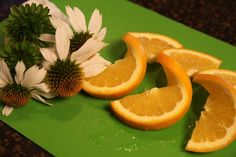 Edible Flowers for Garnishing Food