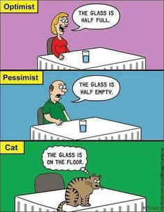 This hilarious cat comics, drawn by Scott Metzger, perfectly capture the nature of cats. Funny Animal Pictures, Funny Photos, Crazy Cat Lady, Crazy Cats, Catsu The Cat, Funny Cats, Funny Animals, Funny Horses, Animal Memes