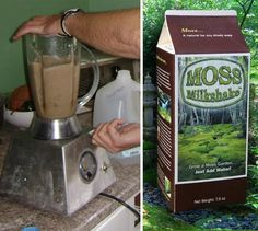 Moss Milkshake For Moss Yards