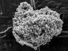 News > Space > Comet dust found in Antarctica - Researchers unearth relatively large amount of material trapped in ice and snow - Credit: TAKAAKI NOGUCHI - Caption: A single particle of comet dust collected from Antarctic ice, as seen through an electron microscope.