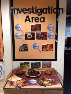 An investigation area make science inquiry easy. Use objects and a board to ask questions, observe and inference. Reggio Emilia, Reggio Classroom, Kindergarten Classroom, Classroom Displays Eyfs, Play Based Learning, Learning Centers, Early Learning, Autumn Activities, Science Activities