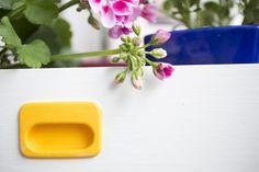Kukkia lipastonlaatikossa Kuva Satu Nyström