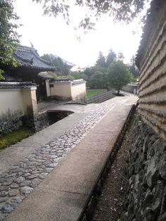 奈良公園 2014.08