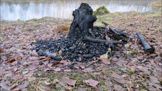 Fosforiidimaa / Phosphate Rock mining area in Estonia Firewood, Texture, Rock, Surface Finish, Woodburning, Skirt, Locks, The Rock, Rock Music