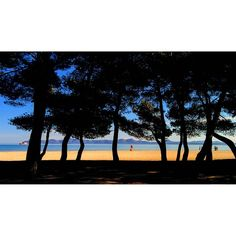 Zonas de verano en pleno invierno. by sa_fita_backpackers
