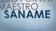 Saname - Any Puello 2013