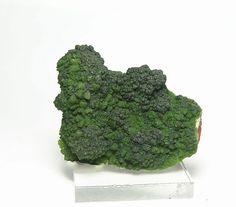 Green Conichalcite including calcite Druzy by FenderMinerals,