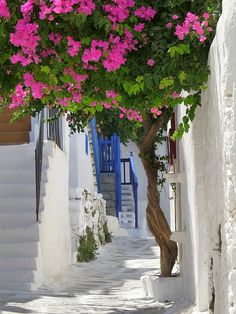 Mykonos, Greece. Cannot seem to tire of these beautiful pictures of Greece with their white surfaces amid brilliant colors! ASPEN CREEK TRAVEL - karen@aspencreektravel.com