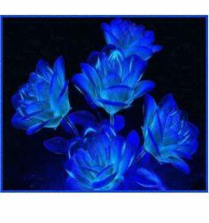 Amour personnalisable mon bleu russe
