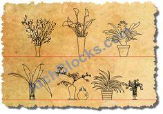 AutoCAD Symbols of Indoor House Plants