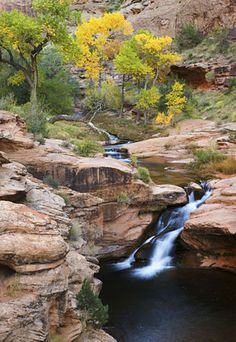 Visiting Moab, Utah? Mill Creek Canyon has several swimming holes nestled among red rock and petroglyphs. Take a short, moderate hike along the North Fork of Mill Creek Canyon. You'll discover a swimming hole about one mile up the canyon, and another one a half-mile beyond that.