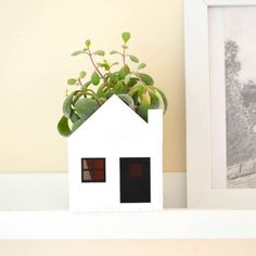 This little house planter is nothing short of adorable.