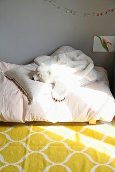 Deguisement / tapis Peau de Bete Ratatam http://www.smallable.com/animaux/37195-deguisement-peau-de-betes-ours-polaire.html