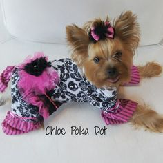 Cutest pink and black dog jammies ever