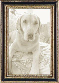 Framed Mini Poster White Witch Gloss Black 40 x 50cm