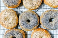 Cagle Bagel (cckaough) on Pinterest