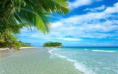 푸른 바다와 하늘, 해변, 해안, 야자수, 열대, 물