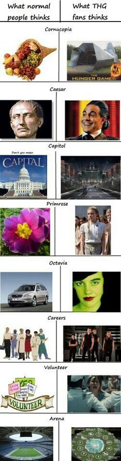 Normal people vs. Tributes